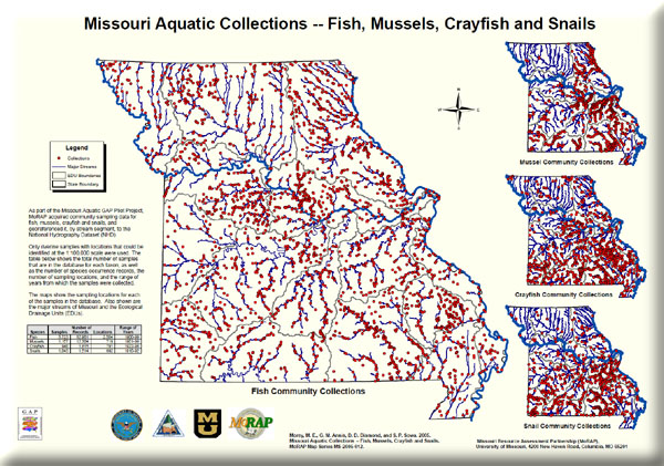 Poster: Missouri Aquatic Collections -- Fish, Mussels, Crayfish and Snails